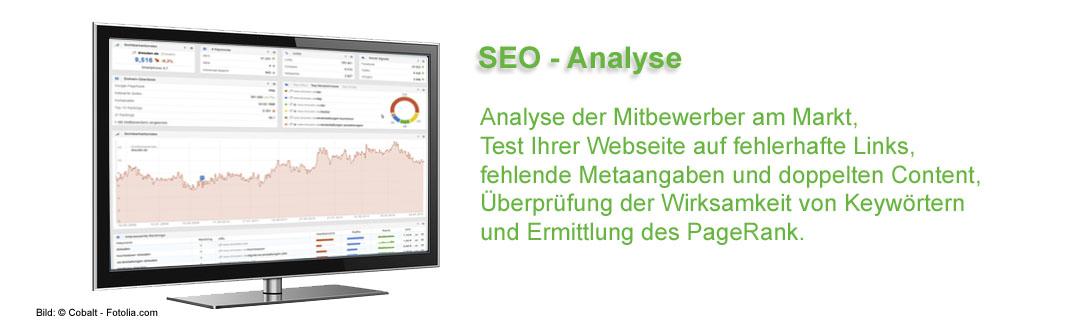 Analyse der Mitbewerber am Markt, Test Ihrer Webseite auf fehlerhafte Links, Metaangaben und doppelten Content, Keywörter, PageRank.